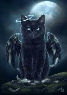 Wallpaper Gatos, Cat Wallpaper, Black Cat Art, Black Cats, Gothic Fantasy Art, Halloween Cat, Halloween Drawings, Halloween Illustration, Cat Drawing