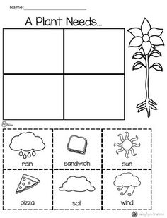 Ideas for plants for kids teaching young children - Kindergarten Kindergarten Worksheets, Kindergarten Activities, Science Activities, Classroom Activities, Science Worksheets, Worksheets For Kids, Science Lessons, Matching Worksheets, Kids Learning