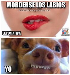 Morderse los labios expectativa y realidad Funny Animal Jokes, Funny Animal Pictures, Animal Memes, Funny Animals, Funny Spanish Memes, Spanish Humor, Mexican Memes, New Memes, Stupid Funny Memes