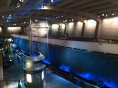 German U-boat submarine at the Chicago Museum of Science and Industry Vacation Places, Vacation Trips, Chicago Museums, Scuba Diving, World War Ii, Holiday Fun, Transportation, Nature Photography, German