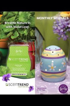Scentsy February Warmer of the Month! Order yours now, visit my website http://coradoerksen.scentsy.ca