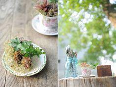 http://www.andreadozier.com/blog/wp-content/uploads/2011/07/soil-mates-organic-engagement-session-vegetable-garden-wedding-andreadozier-02.jpg