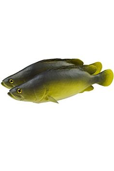 Artificial Croaker Lifelike and Realtouch PU Fish for Fish Tank or the Aquarium Restaurant Hotel Display * You can get more details by clicking on the image.