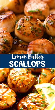 You will never believe how easy and fast it is to make Pan Seared Scallops with a Lemon Butter Sauce. Sweet, buttery an Shrimp And Scallop Recipes, Easy Scallop Recipes, Recipes With Scallops, Salmon And Scallops Recipe, Grilled Sea Scallops, Best Scallop Recipe, Pan Fried Scallops, Healthy Dinner Recipes, Seafood Recipes