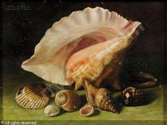 Google Image Result for http://www.artvalue.com/photos/auction/0/43/43578/american-school-19-20-usa-still-life-with-sea-shells-1941679.jpg