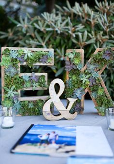 Obviously T and K....but love!  Monogram Wooden Succulent Letter Succulent by 2ndNatureSucculents