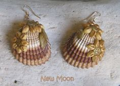 clam shell crafts - Google Search