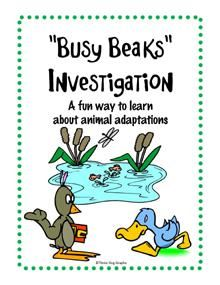 Busy Beaks Fun Animal Adaptations Hands On Investigation Activity product from The-Trail-4-Success on TeachersNotebook.com
