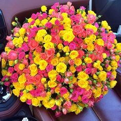 n-ellum:  ♕ KEEP IT CLASSY ♕ White Lotus, Keep It Classy, New Fragrances, Colour Inspiration, Make Me Smile, Flower Power, Sunshine, Roses, Flowers