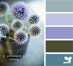 collor arranged tones