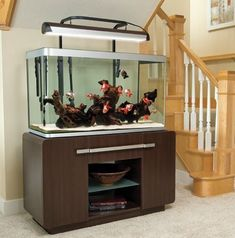 Splendid DIY Aquarium Furniture Ideas To beautify Your Home - CueThat <br> diy aquarium furniture stands are an integral part of every aquatic system. The aquarium stand should be sturdy so that it can bear the weight of a filled a Goldfish Aquarium, Goldfish Tank, Marine Aquarium, Aquarium Fish Tank, Saltwater Aquarium, Fish Tanks, 125 Gallon Fish Tank, 75 Gallon Aquarium Stand, 55 Gallon