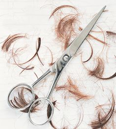 Which Haircut is Right for You?