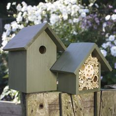 The Birds and the Bees Old English Green by Wudwerx on Etsy Types Of Insects, Different Birds, Birds And The Bees, Bird Boxes, Pet Life, Old English, Natural Wonders, Solid Wood, Canning