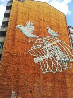 Angry birds Girona Spain
