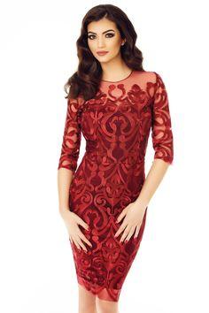 Combina rochia bordo Anysia cu o atitudine increzatoare si vei fi apreciata pentru farmecul si stilul tau deosebit, la orice eveniment sp... Fall Dresses, Pretty Dresses, Formal Dresses, Sheath Dress, Dress Skirt, Red Velvet Dress, Applique Dress, Looks Style, Fashion Looks