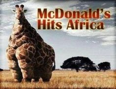 Funny Pictures, Funny jokes and so much more | Jokideo | Mcdonalds hits africa | http://www.jokideo.com