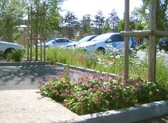Car Park Design, Parking Design, Verbena, Parking Lot, Car Parking, Urban Landscape, Landscape Design, Green Street, Plant Design