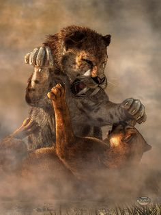 A Smilodon and a Cougar are locked in fierce combat during the Pleistocene by Daniel Eskridge