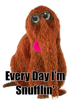 One of my favorite muppets! Sesame Street Muppets, Sesame Street Characters, Cartoon Characters, 90s Childhood, Childhood Memories, Fraggle Rock, The Muppet Show, What Do You Mean, 80s Kids