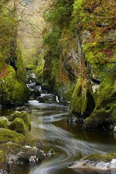 Fairy Glen, Wales, another reminder of being in a river like this one up north.