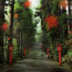 The Gentle Path to the Beyond photo from #treyratcliff Trey Ratcliff at www.StuckInCustom... - all images Creative Commons Noncommercial
