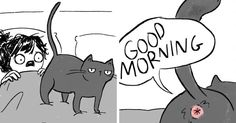 Artist Illustrates What It's Like To Live With Cats (10+ Pics) -    Do you have a cat? If you do, then you will love these fun comics by a 27-year-old San Francisco-based artist Hannah Hillam who shows what life rea...