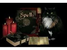 ©©Most Powerful Lost Love Spell Caster jn Auckland,Christchurch,Dunedin Johannesburg - Varsity Trader SA Lost Love Spells, Powerful Love Spells, Voodoo Spells, Wiccan Spells, Wiccan Rituals, Sydney, Melbourne, Auckland, Break Up Spells