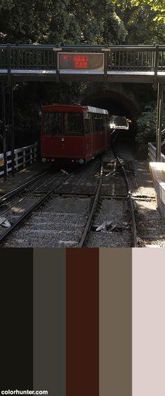 Rsdigby_0526 Color Scheme