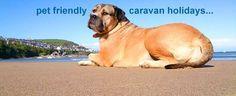 Pet Friendly Private Static Caravan Hire | static-caravan.co.uk