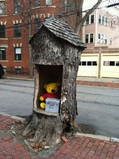 Pooh's Place on Hurlbut Street in #CambridgeMA - DiscoverNeighborhood9.com