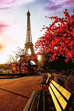 Autumn in Paris  #dreamfallwedding #loveinthedetails and #beckywade.