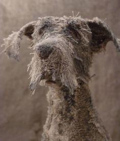 ~Helen Thompson tarafından köpek heykeller. http://www.mozzarte.com/tasarim/helen-thompson-tarafindan-kopek-heykeller/