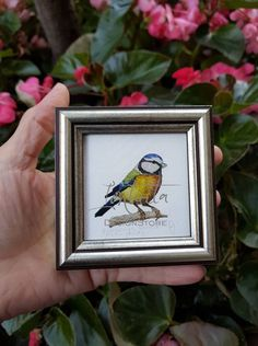 Tiny Blue Tit Framed Giclée Print Great Tit, Migratory Birds, Blue Tit, Nesting Boxes, Bird Prints, Printing Process, Giclee Print, Watercolor Paintings, Digital Prints