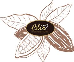 Bliss is India's first luxury chocolate brand and has brought the first Chocolate Lounge to India.