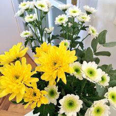 Tonterías que alegran la mañana #flores #gracias