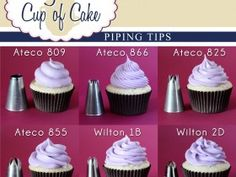Tons of recipes. Cupcake icing tip tips :)