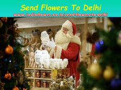 Seeking a affordable online shop that Send Flowers to Delhi at home price so end your journey at buyflower.in, Delhi Online Florist, Delhi Flowers Delivery. Christmas Day Celebration, Happy Christmas Day, Diwali Celebration, Fast Flowers, Send Flowers, 24 7 Delivery, Birth Of Jesus Christ, Festivals Of India, Online Flower Delivery