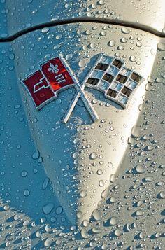 lahoriblefollia:  Corvette Sting Ray 1967