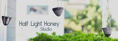 Half Light Honey Studio