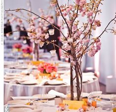 Sprigs of cherry blossoms are great to create height in your table centrepieces.