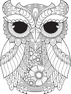 Owl adult colouring page