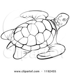 Image from http://images.clipartof.com/small/1192455-Clipart-Of-A-Black-And-White-Sea-Turtle-Royalty-Free-Vector-Illustration.jpg.