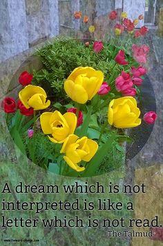 Interpret your #dreams.