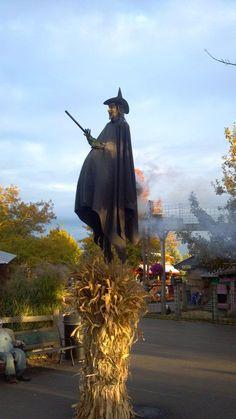 witch. Halloween prop