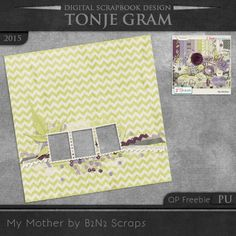 TonjeGram_MyMother_by_B2N2_QP_pu