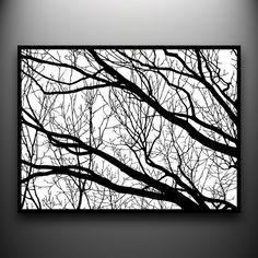 beautiful black and white...