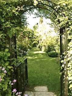 The beauty of nature - green meadow through iron gates