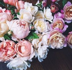 blooms of the day x