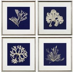 In our stunning sea life series, Seaweed on Navy, white imagery of artistically rendered seaweed is shown against a navy hued backdrop. Elegant in composition,...