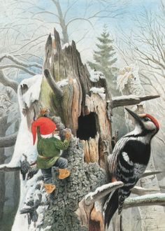 Gnome and friend. Swedish Christmas, Christmas Gnome, Scandinavian Christmas, Christmas Art, Woodland Creatures, Mythical Creatures, Les Moomins, David The Gnome, Baumgarten